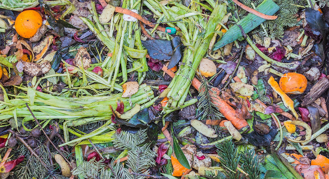 South African property company starts composting
