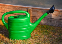 Biodegradable plastic watering can on grass