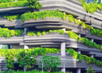 Plants and grass on modern building roof