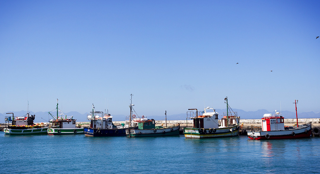 Reducing pollution from illegal fishing vessels - © Joshua Oates