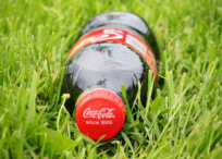 Coca-Cola bottle in the grass