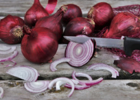 Chopped red onions with food waste offcuts