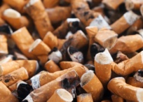 cigarette butts plastic pollution